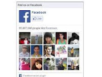 Cara Memasang Facebook Like Box dan Google+ Valid Amp