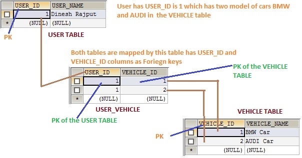 hibernate mapping id generator assigned