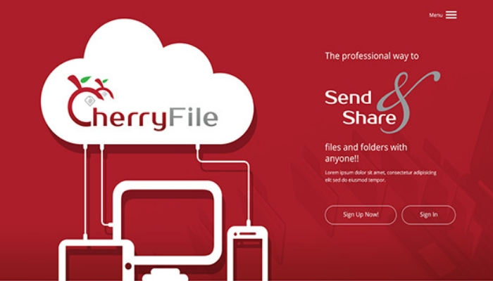 CherryFile: Advanced File Sharing System