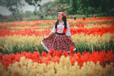 Gambar Keren Taman Bunga Tali Asmoro Cilacap