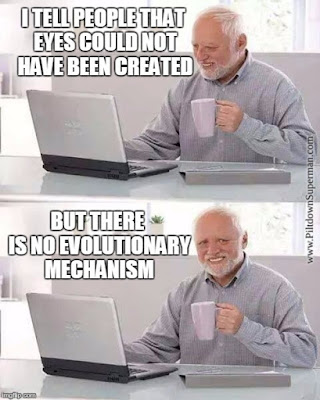 Evolutionists have no plausible mechanism or evidence for eye evolution