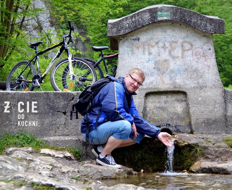zrodlo milosci, zrodelko milosci, ojcow, ojcowski park narodowy, malopolska, wycieczka rowerowa, na rowerze do ojcowa, pstrag potokowy, zycie od kuchni