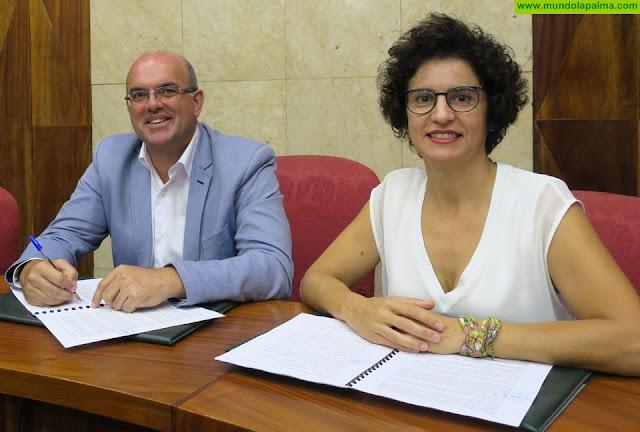 El Cabildo licita la construcción del centro residencial para personas con Alzheimer