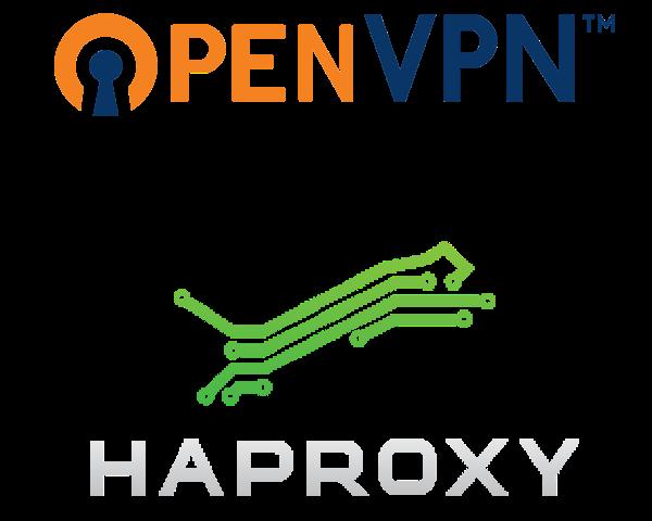 WhiteBoard Coder: OpenVPN and HAProxy