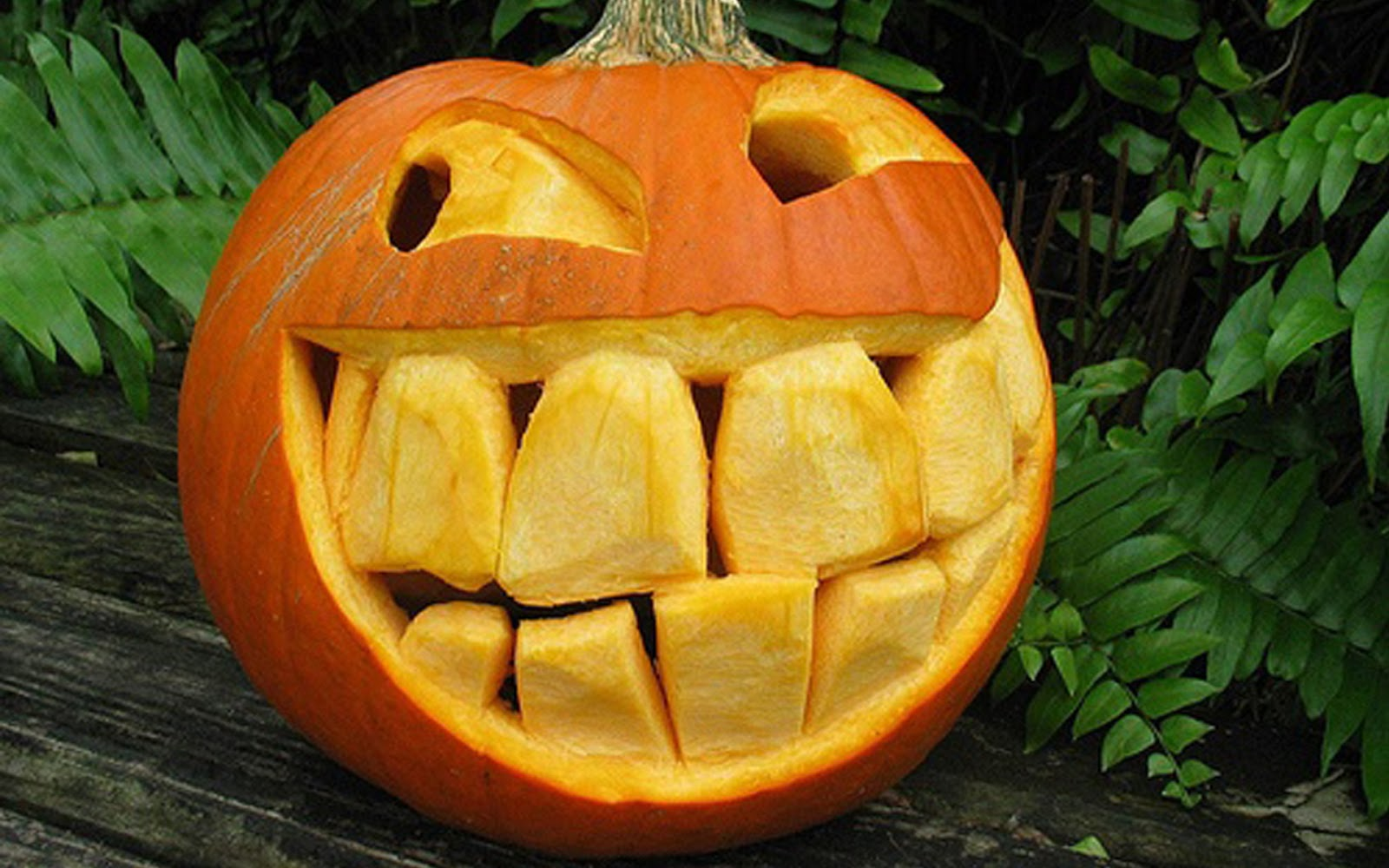 Pumpkin Carving Ideas for Halloween 2017: More Great ...