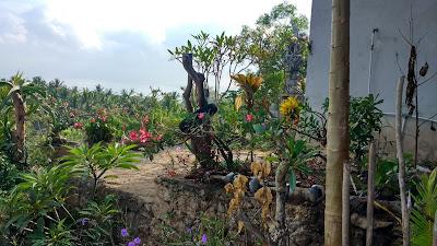 El proyecto de Indonesia está en un entorno espectacular