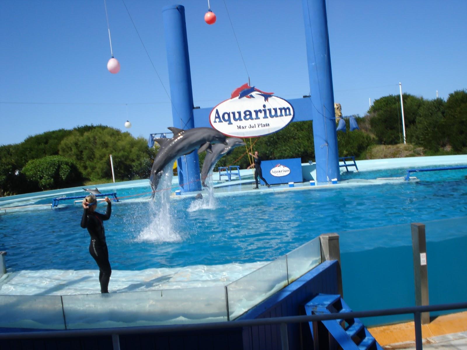 Aquarium Mar del Plata