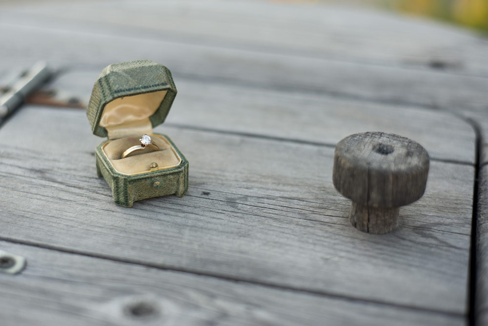 Antique Ring Fort Edmonton Park Vintage Wedding Victorian Retro History Romance Love Engaged Hotel Selkirk