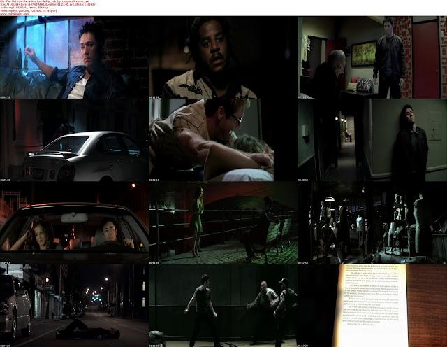 La Chica De Los Ojos Desnudos 2012 DVDRip Subtitulos Español Latino Descargar 1 Link