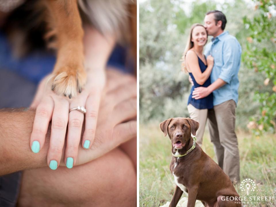 Ensaio de casais com seus cachorros