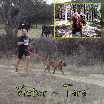 Victor - Tara