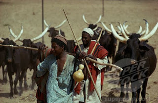FG begs herdsmen to embrace ranches 3