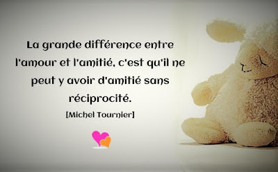 Citation de Michel Tournier entre l'amour et l'amitié.