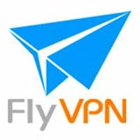 安全VPN FlyVPN