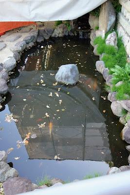 敦盛首洗いの池