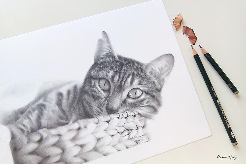 Retrato de un gato dibujado a lápiz de grafito