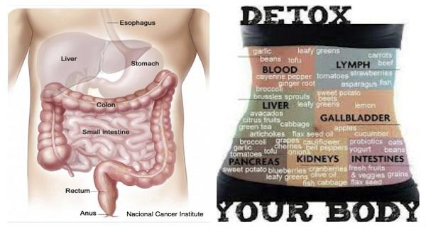 Los-signos-de-advertencia-5-que-su-cuerpo-está-lleno-de-toxinas.