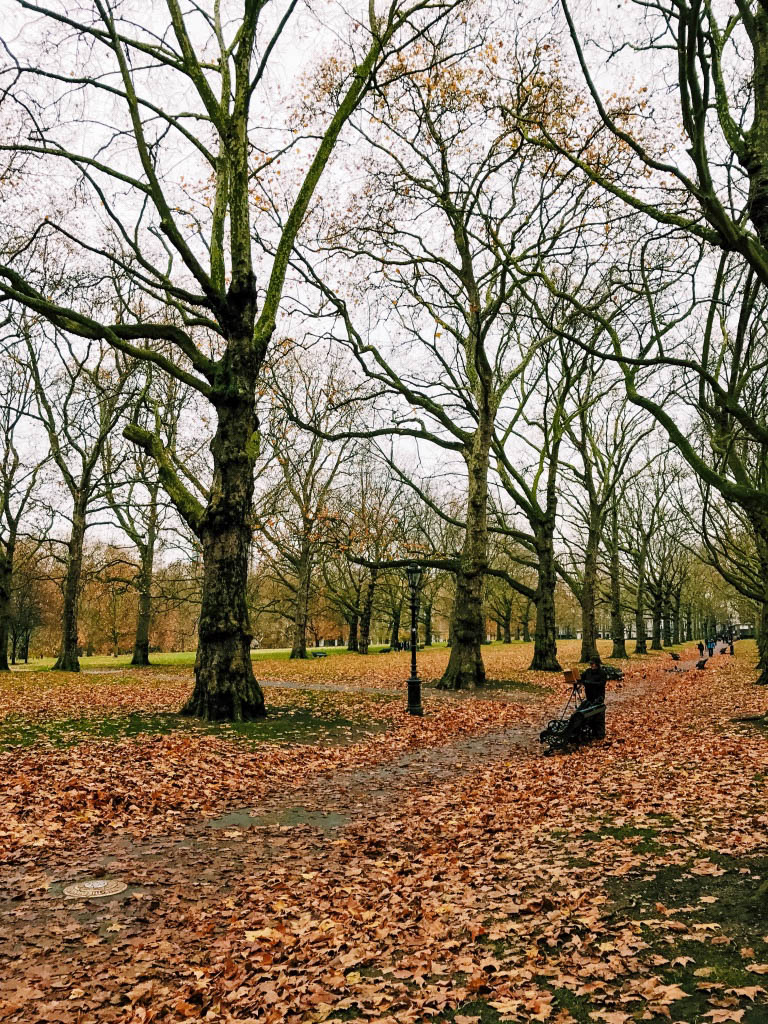 Green Park in autumn