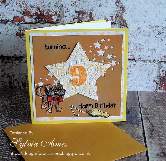 Designs For Occasions Cool Dude 9th Birthday Card