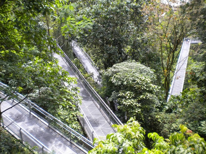 The Southern Ridges is a 10km connector trail that links to five other parks (Mount Faber, Telok Blangah Hill Park, HortPark, Kent Ridge Park and Labrador Nature Reserve).