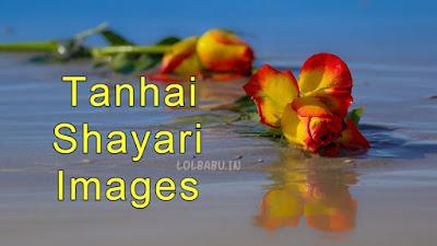 Main aur meri Tanhai shayari images 2019