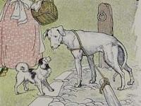 Dongeng Anak | Anjing yang Nakal (Aesop)