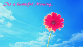 good-morning-flowers-images