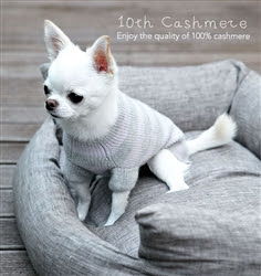 LOUIS DOG 10TH CASHMERE - FROST GREY
