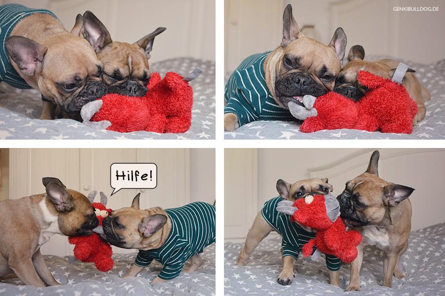 Hundezubehör von Puppy & Prince Französische Bulldogge