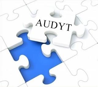 sporzadzanie-audytu