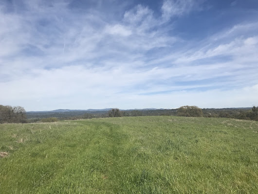 Just Sold! 34 Acres on Gold Hill Road in Placerville!!