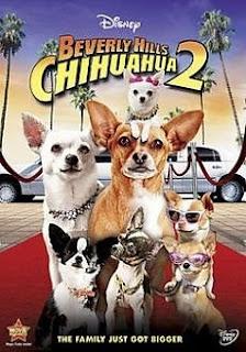 Những Chú Chó Chihuahua Ở Đồi Beverly 2