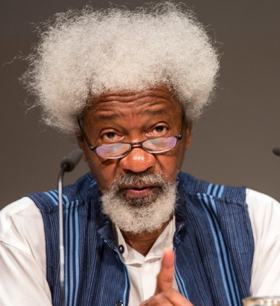 soyinka warns army against attack ipob members