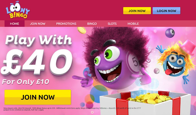 Loony Bingo - Play with £40 for only £10