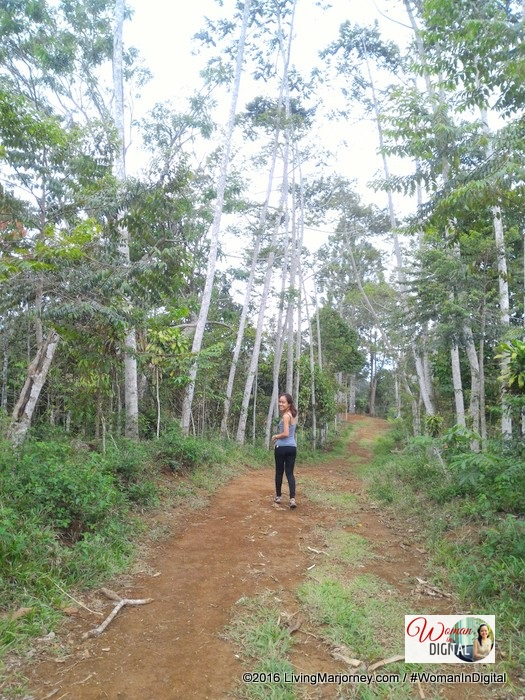 eco-walk at Mt. Kitanglad