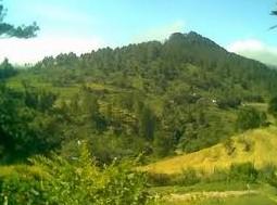http://www.teluklove.com/2017/02/destinasti-objek-wisata-desa-petang-di.html