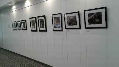 Photography Group Show - October 10 - November 16, 2017 -Scottsdale Community College Library