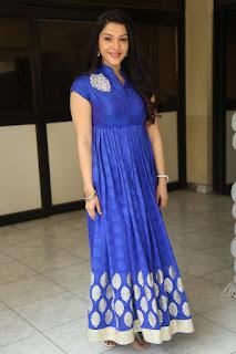 Actress Mehreen Pictures in Blue Dress at Krishna Gadi Veera Prema Gaadha Interview  0030.jpg
