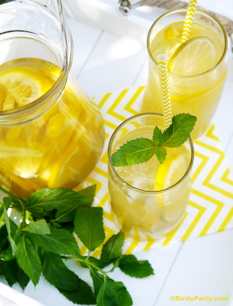 Skinny & Healthy Citrus Green Iced Tea Recipe - BirdsParty.com