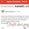 Edisi Khusus Buat Yang suka Blogwalking - Trafik dari Google Plus