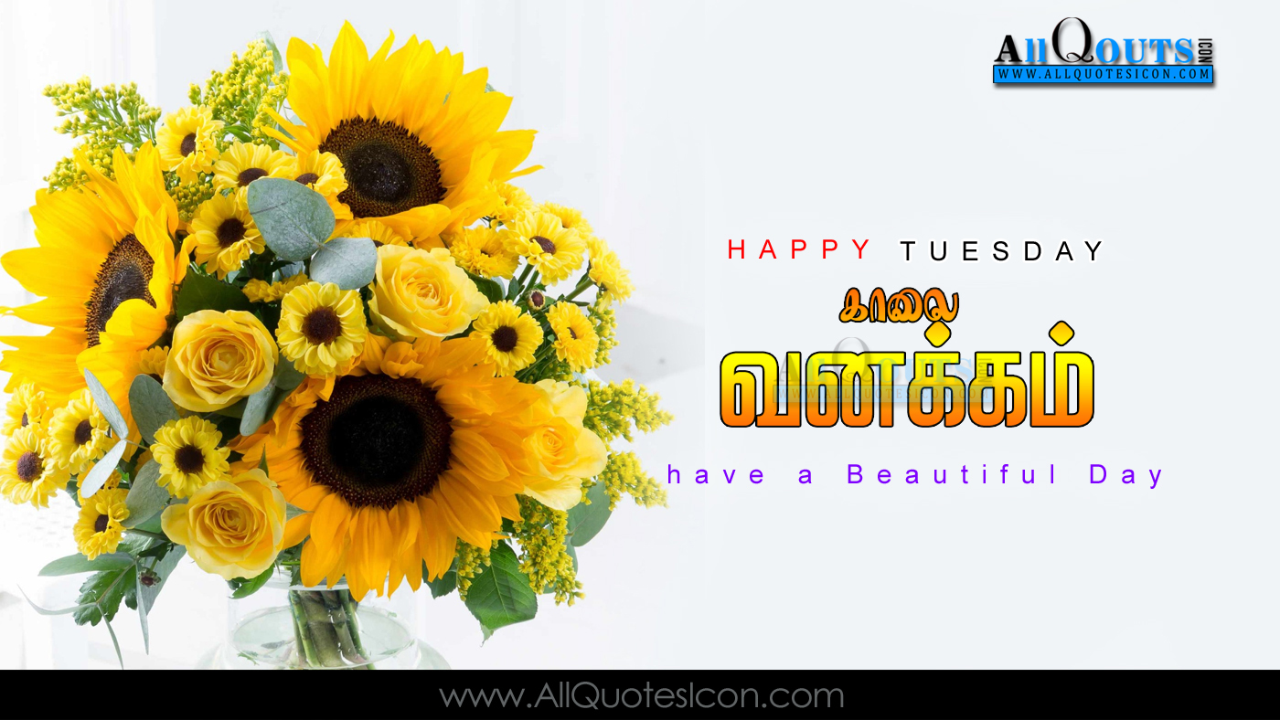 Thursday Morning Greeting Quotes Topsimages