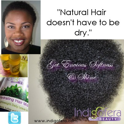 Indigofera Beauty Blog African American Natural Hair Care