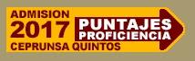 Puntajes Proficiencia, CeprUNSA Quintos , Admisión 2017