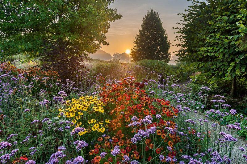 Premios fotografía de jardines IGPOTY 11