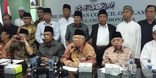 MUI: Isu Wahabi Adalah Bagian dari Permainan Musuh Islam untuk Mengadu Domba Umat Islam dan Melemahkan Persatuan & Kesatuan