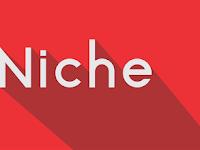 Niche Blog/Website Yang Paling Banyak Dicari Netter