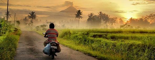 Contoh Peluang Usaha di Desa Modal Kecil Menjanjikan
