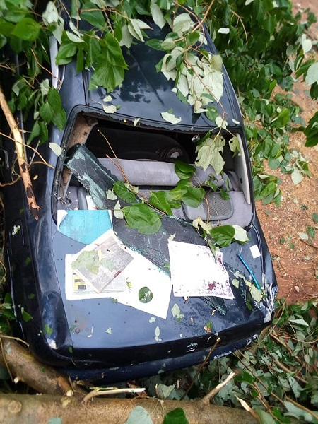 Nigerian Lawmaker Escapes Death After Tree Fell On His Vehicle