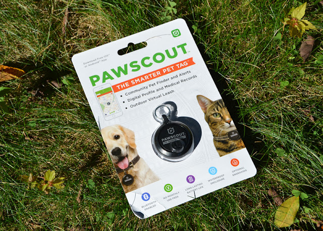 Pawscout communicates with your smartphone and lets you know when your pet moves out a safe zone
