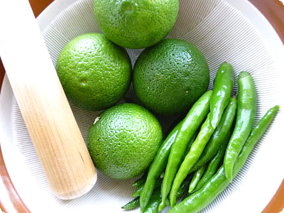 buy Authentic Japanese Spicy Yuzu Citrus Zest kosho Seasoning